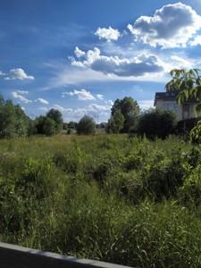 Земельный участок Пушкина, Софиевская Борщаговка, P-28628 - Фото 4
