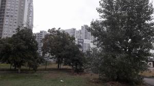 Квартира H-48342, Героев Сталинграда просп., 2д, Киев - Фото 14