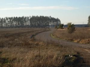 Земельный участок Бузова, R-33755 - Фото2