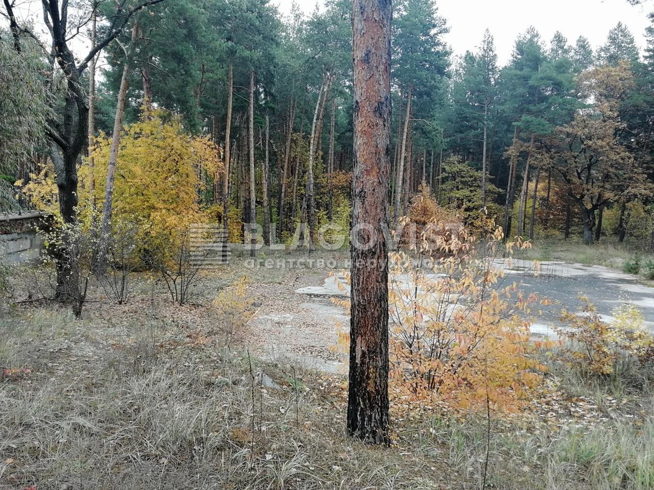 Земельный участок A-111713, Соловьяненко, Козин (Конча-Заспа) - Фото 1