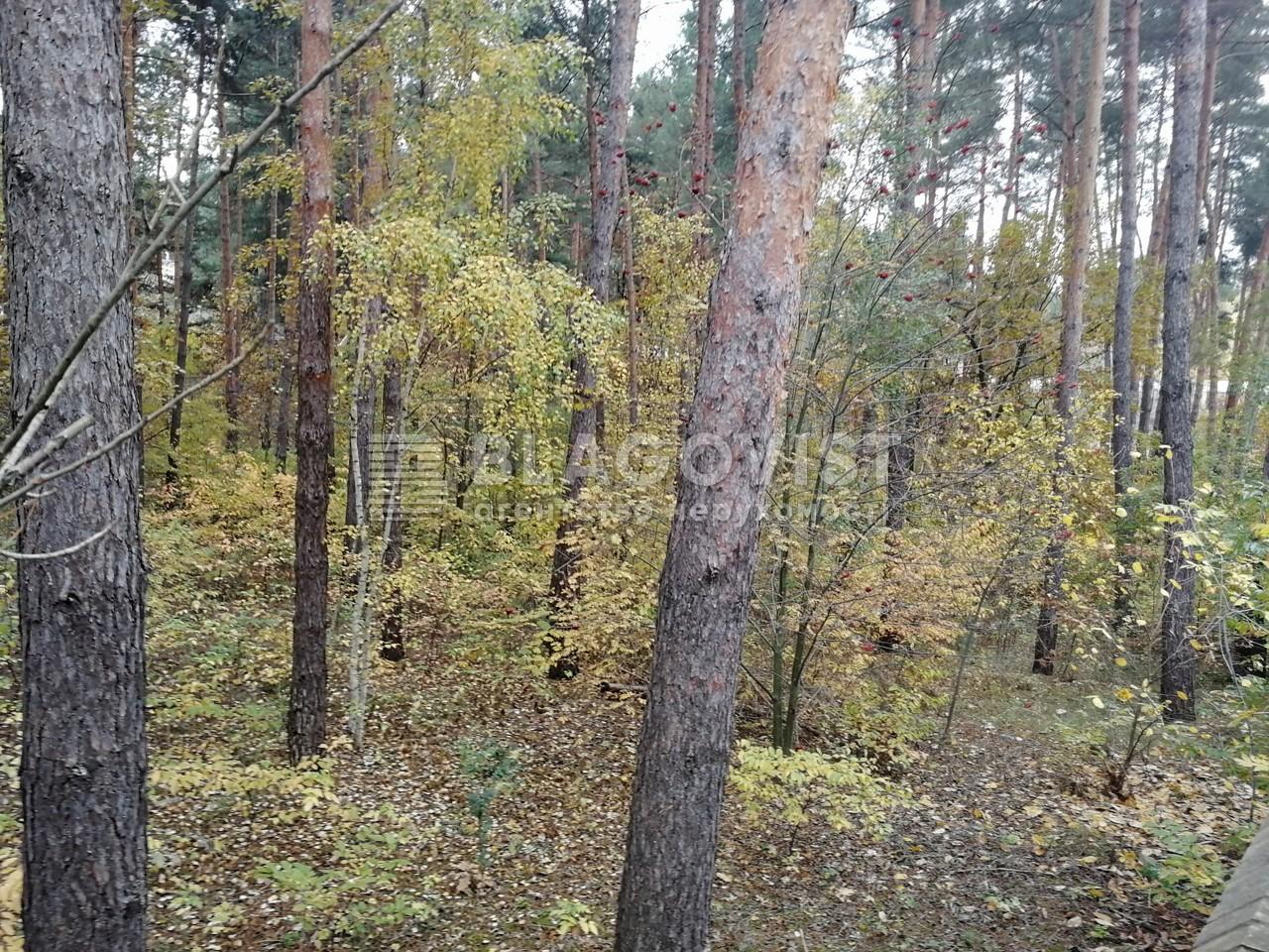Земельный участок A-111713, Соловьяненко, Козин (Конча-Заспа) - Фото 5