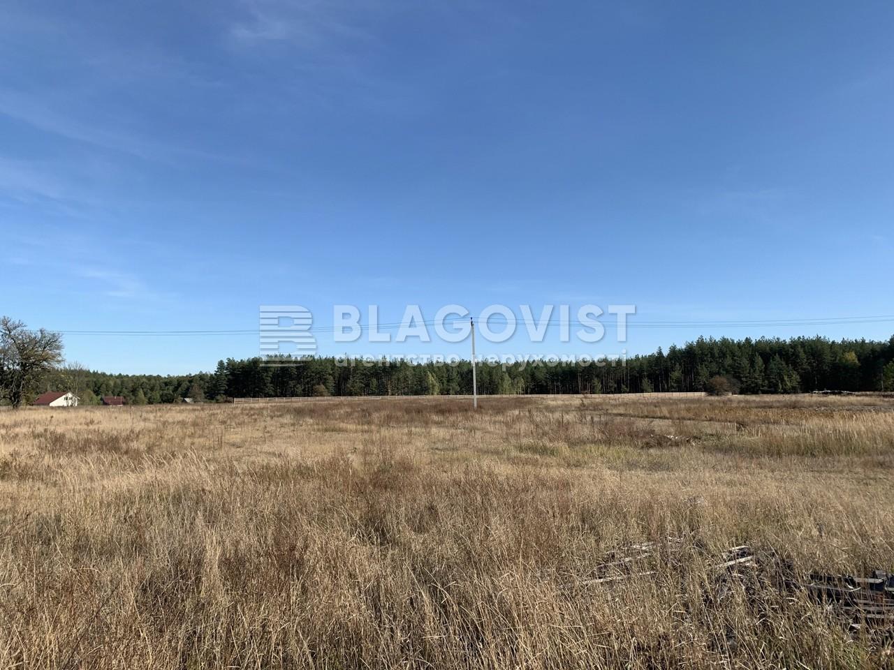 Земельный участок P-28965, Комаровка - Фото 1