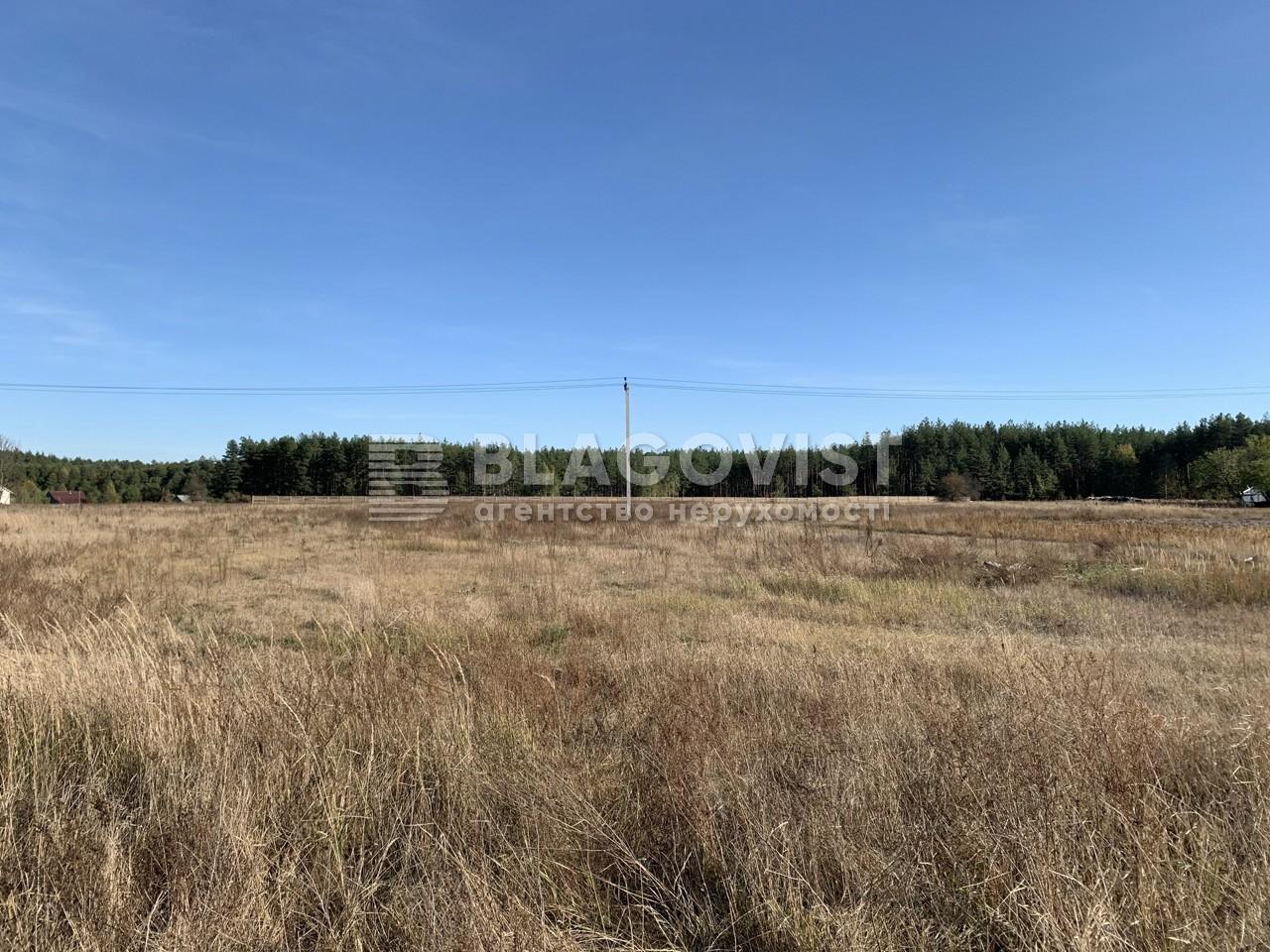Земельный участок P-28965, Комаровка - Фото 2
