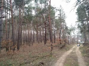 Земельный участок Плюты (Конча-Заспа), P-29068 - Фото