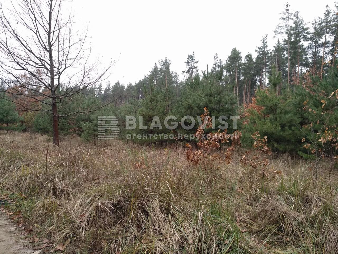 Земельный участок P-29068, Плюты (Конча-Заспа) - Фото 2