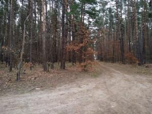 Земельный участок Плюты (Конча-Заспа), P-29068 - Фото 5