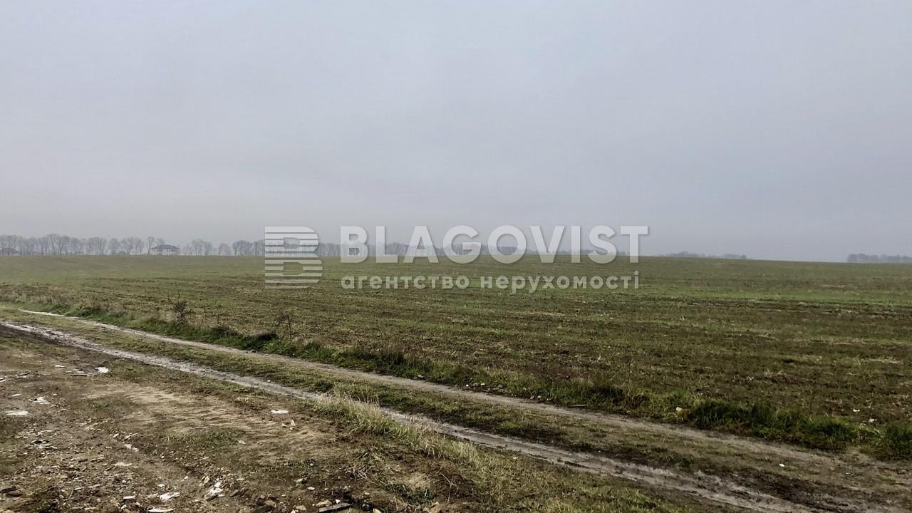 Земельный участок C-108638, Ходосовка - Фото 1