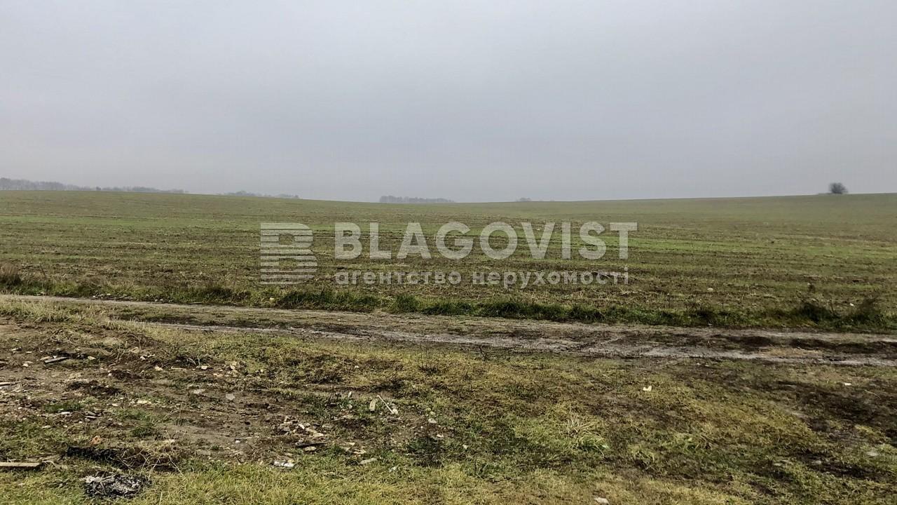 Земельный участок C-108636, Ходосовка - Фото 3