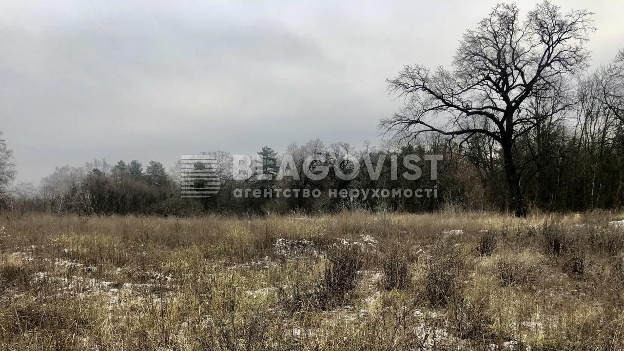 Земельный участок C-108636, Ходосовка - Фото 5