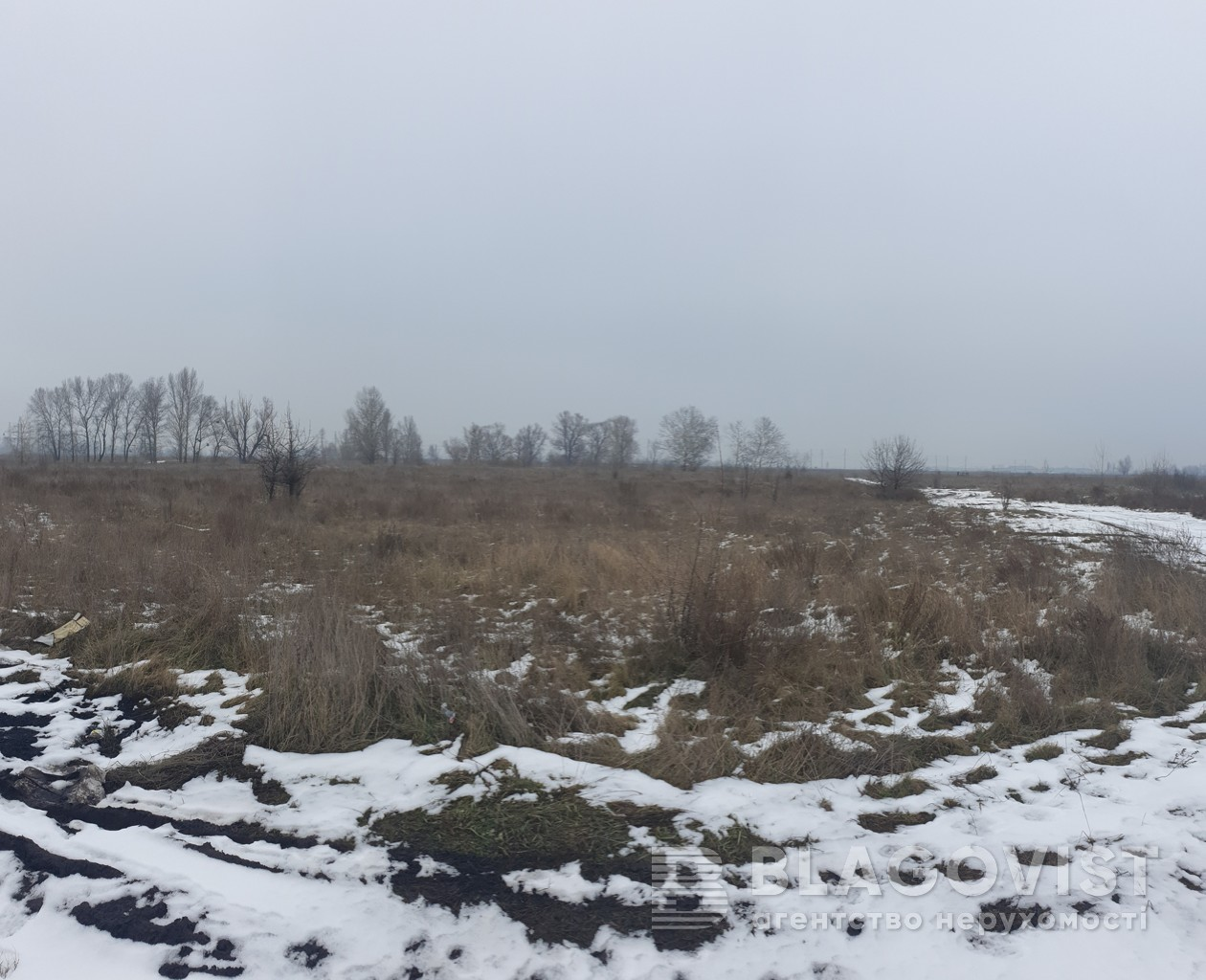 Земельный участок C-108781, Милославская, Киев - Фото 2