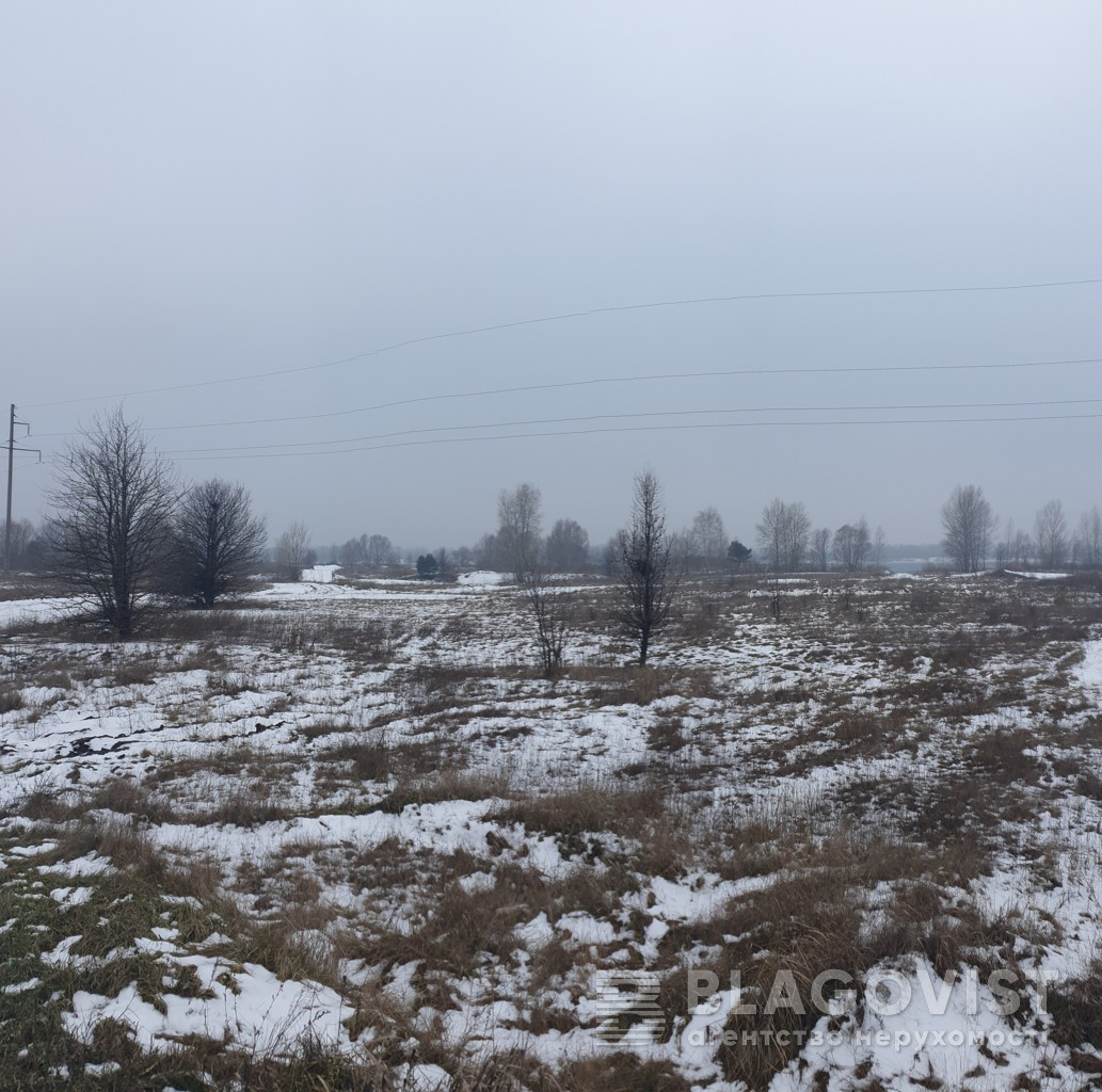 Земельный участок C-108782, Милославская, Киев - Фото 2