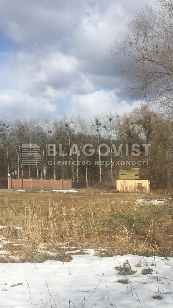 Земельный участок C-108962, Большие Дмитровичи - Фото 2