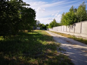 Земельный участок Садовая (Осокорки), Киев, R-37976 - Фото 8