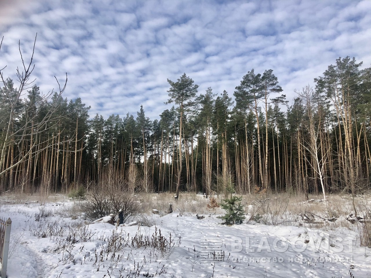 Земельный участок X-28878, Быковнянская, Киев - Фото 3