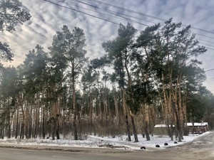 Земельный участок X-28878, Быковнянская, Киев - Фото 2