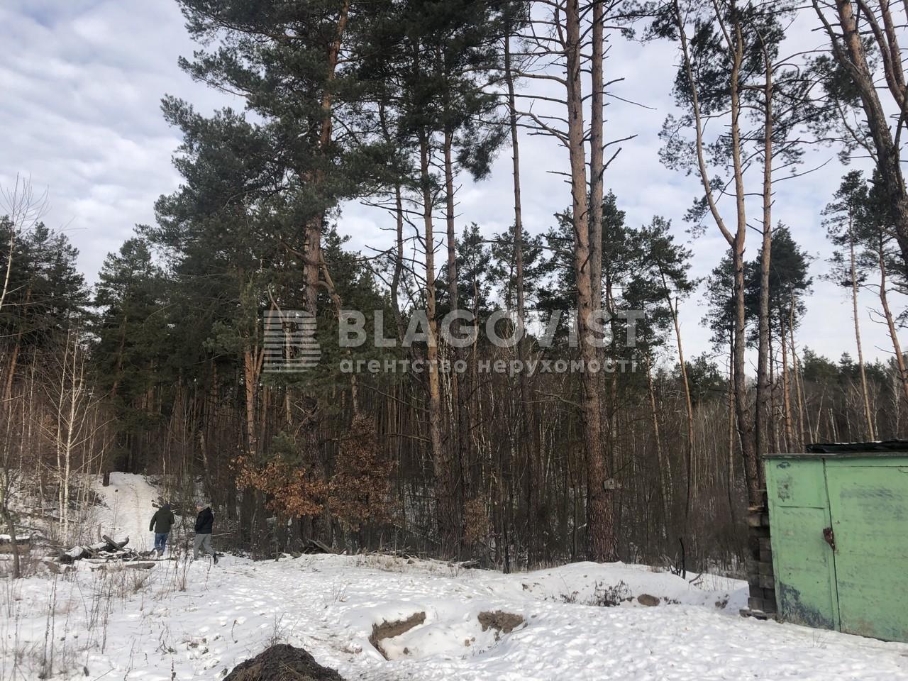 Земельный участок X-28878, Быковнянская, Киев - Фото 5