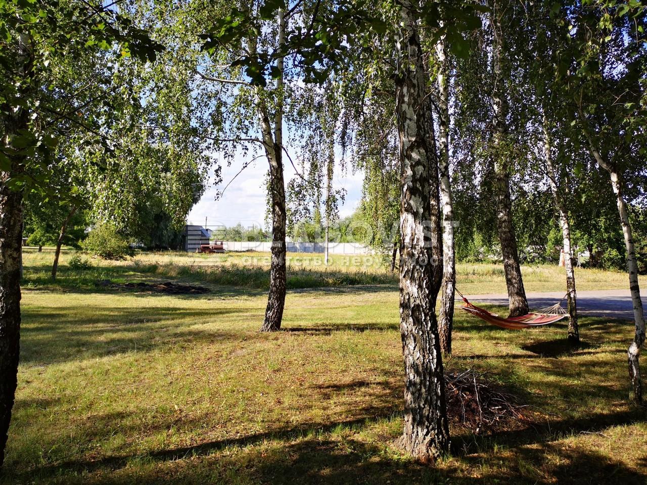 Земельный участок H-49655, Центральная, Киев - Фото 1