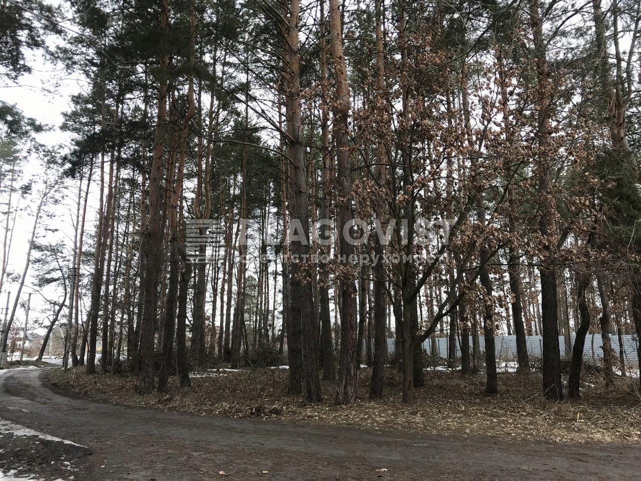 Земельный участок A-112107, Ходосовка - Фото 2
