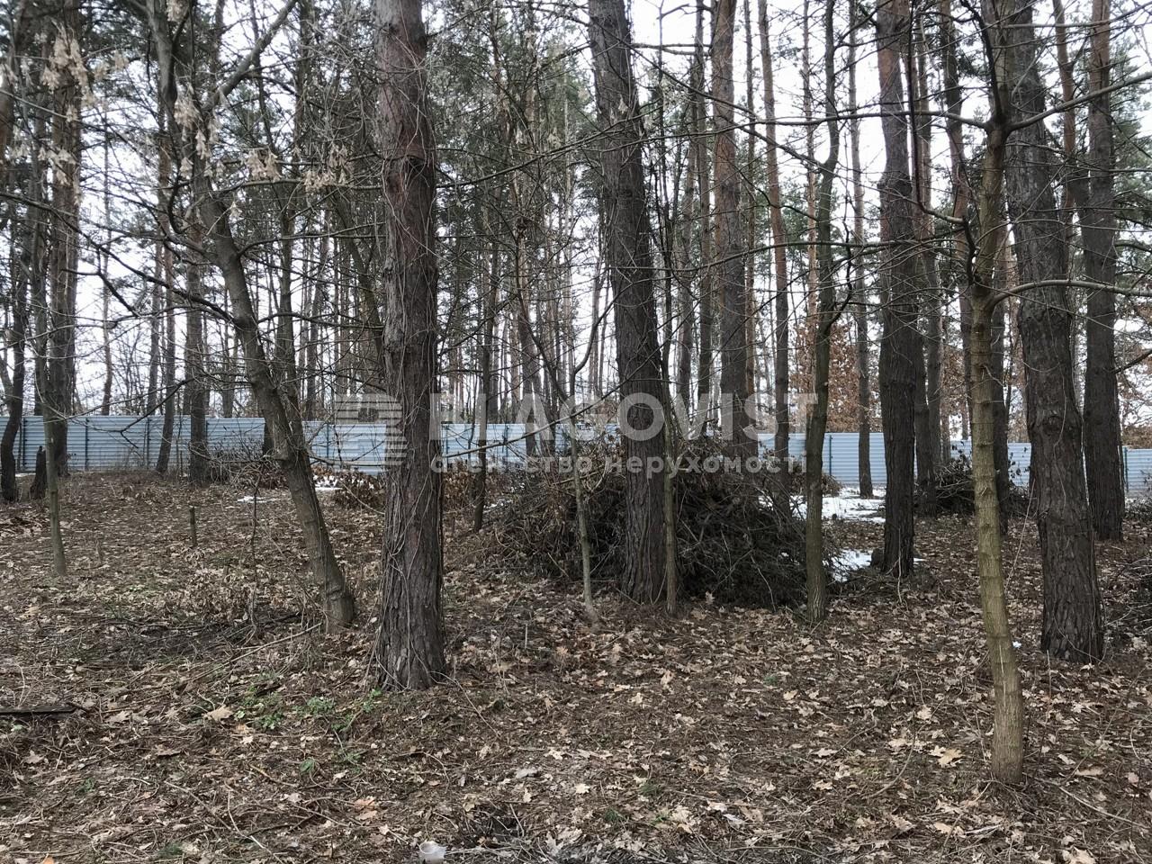 Земельный участок A-112107, Ходосовка - Фото 6