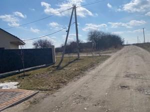 Земельный участок F-44721, Кочерги Ивана, Гореничи - Фото 3