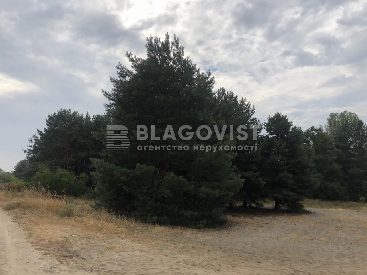 Земельный участок C-109104, Киевская, Вышгород - Фото 4
