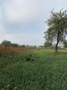 Земельный участок F-43953, Отечественная, Рогозов - Фото 5