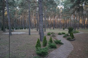 Дом E-39842, Ватутина, Лебедевка (Вышгородский) - Фото 16