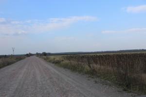 Land Berezivka, R-38491 - Photo