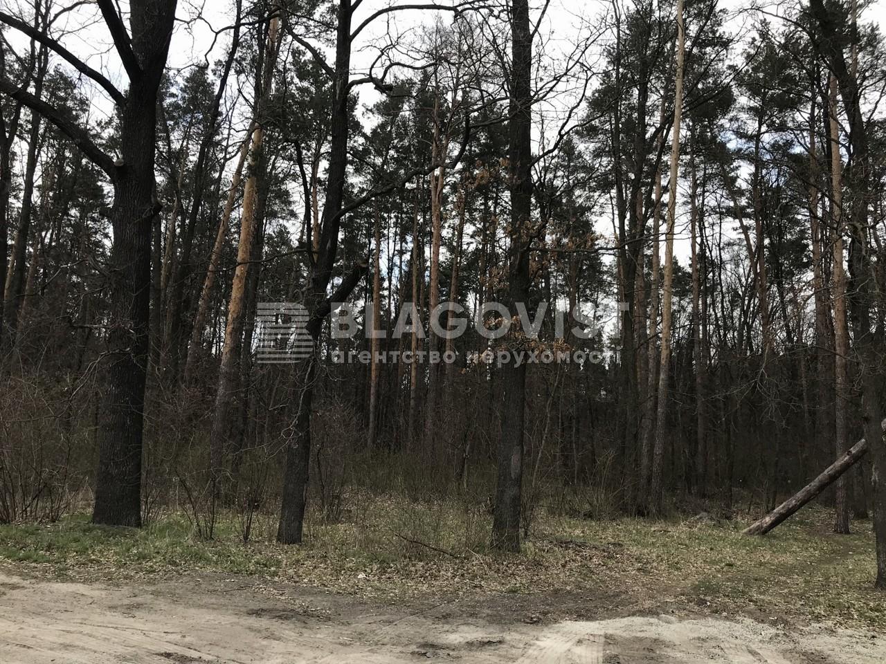 Земельный участок A-112154, 50-летия Победы, Кременище - Фото 7