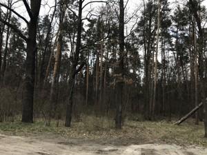 Земельный участок 50-летия Победы, Кременище, A-112154 - Фото 7