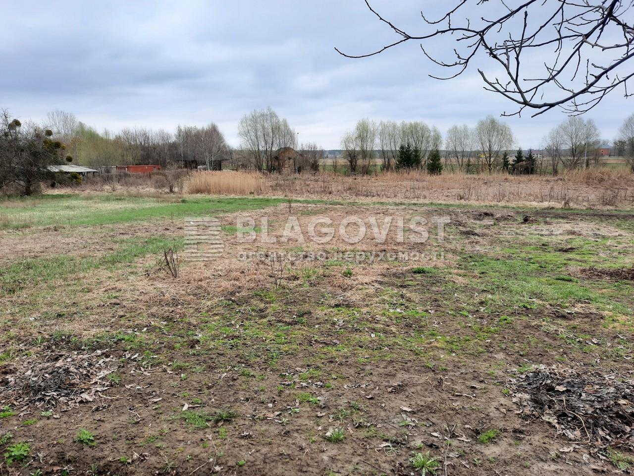 Земельный участок P-29579, Подгорная, Новые Безрадичи - Фото 1