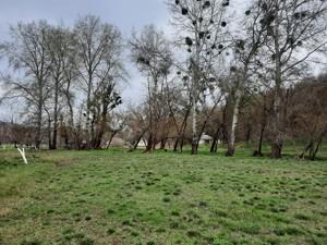 Земельный участок P-29581, Старые Безрадичи - Фото 2