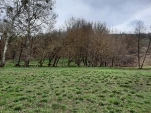 Земельный участок P-29581, Старые Безрадичи - Фото 3