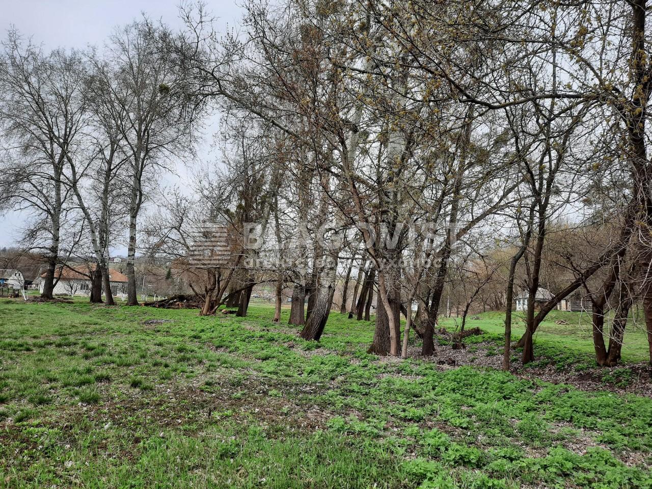 Земельный участок P-29582, Старые Безрадичи - Фото 1