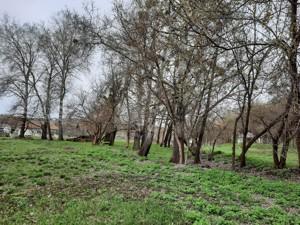 Земельный участок Старые Безрадичи, P-29582 - Фото