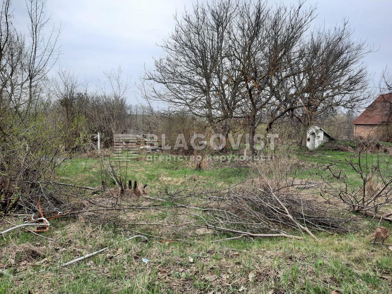 Земельный участок P-29580, Старые Безрадичи - Фото 3