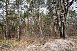 Земельный участок Озерная, Дмитровка (Киево-Святошинский), H-49883 - Фото2