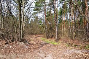 Земельный участок Озерная, Дмитровка (Киево-Святошинский), H-49883 - Фото3