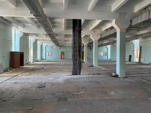 Нежитлове приміщення, Салютна, Київ, A-112203 - Фото3