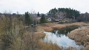Земельный участок H-49913, Киевская, Гуровщина - Фото 11