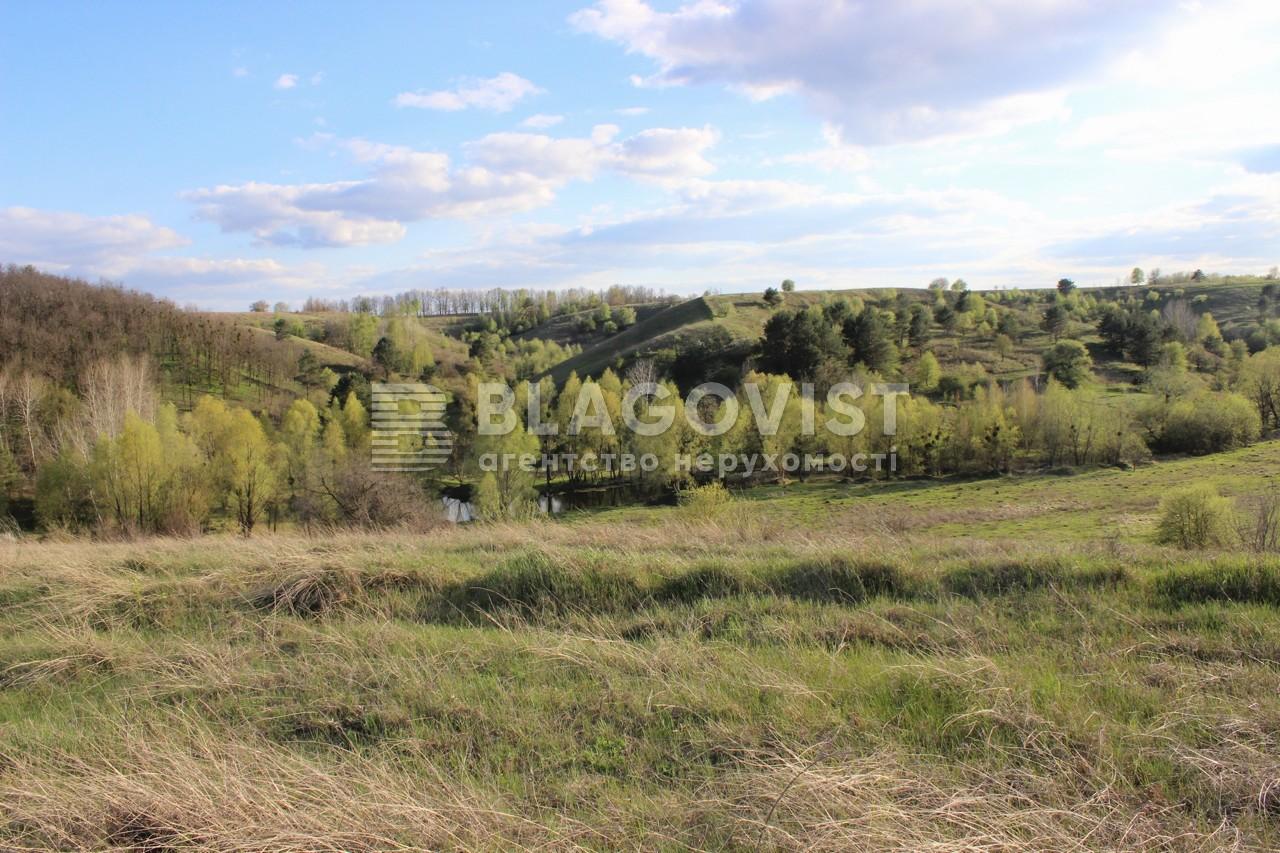 Земельный участок R-38731, Старые Безрадичи - Фото 1