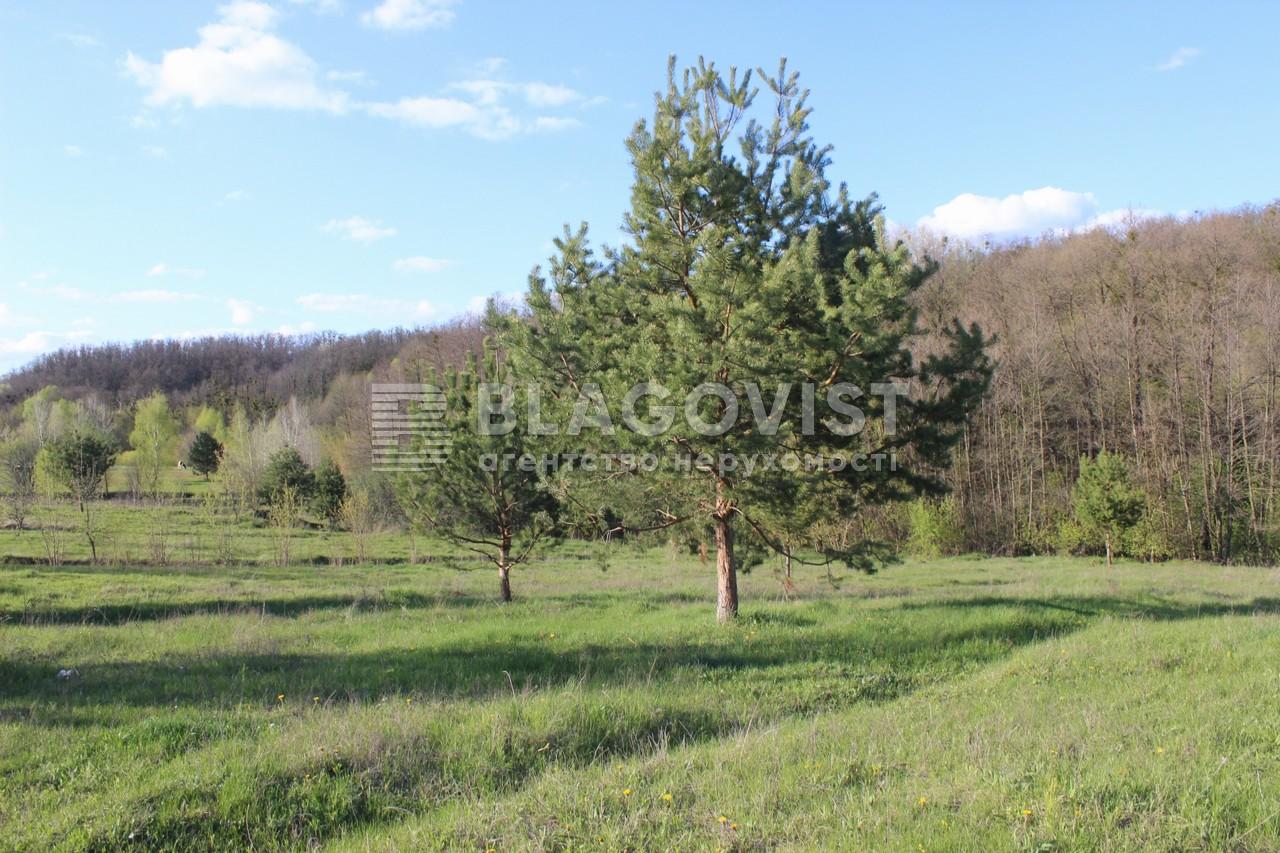 Земельный участок R-38731, Старые Безрадичи - Фото 2