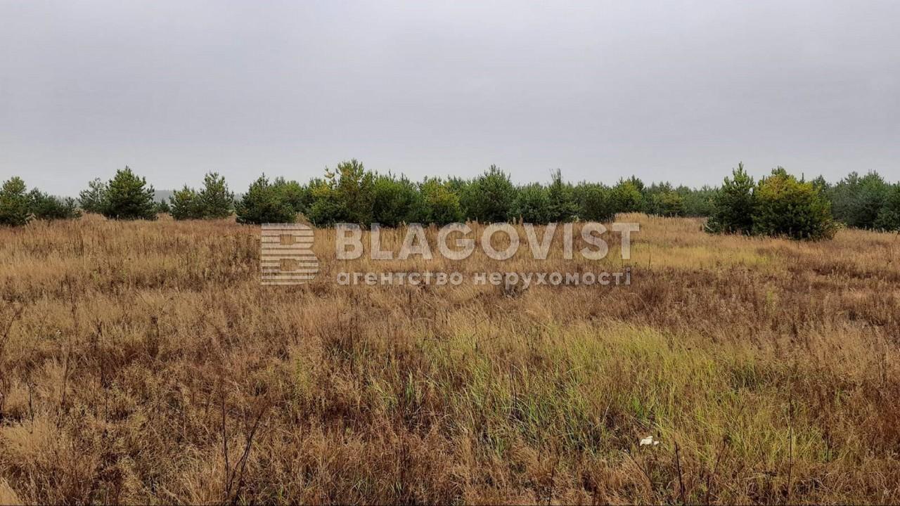 Земельный участок P-28764, Дмитриевка (Петровское) - Фото 1