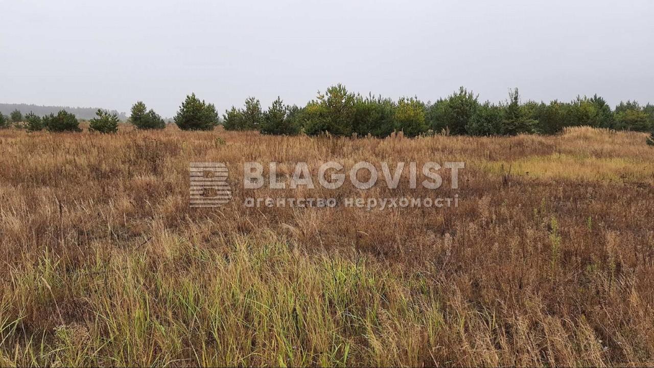 Земельный участок P-28764, Дмитриевка (Петровское) - Фото 3