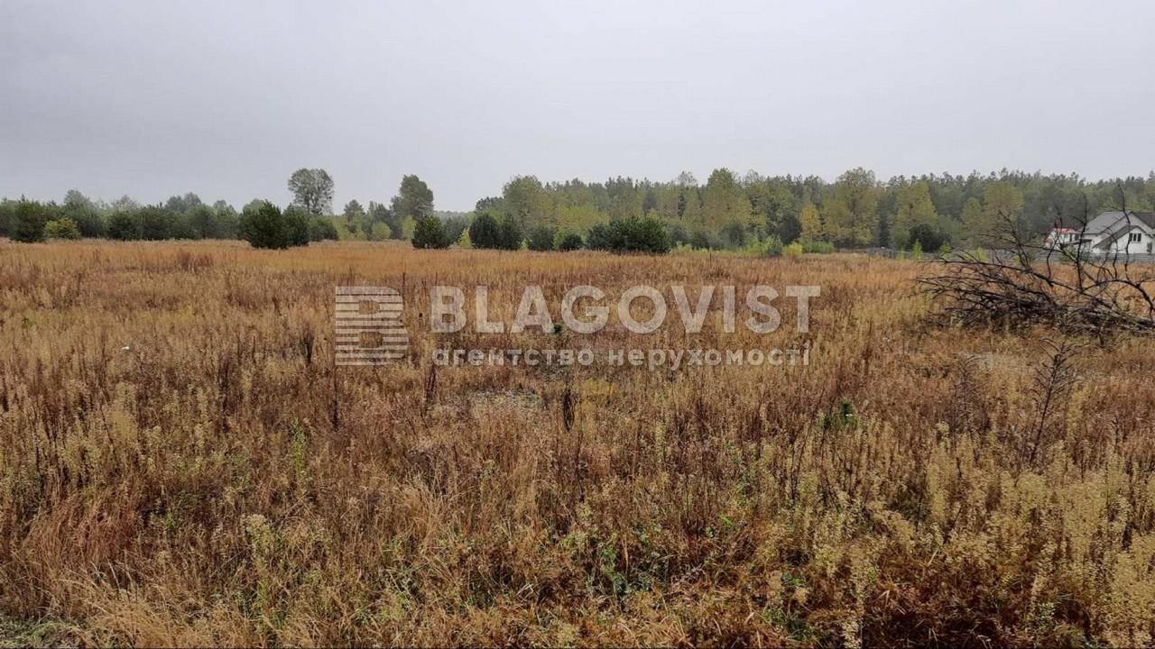 Земельный участок P-28764, Дмитриевка (Петровское) - Фото 4