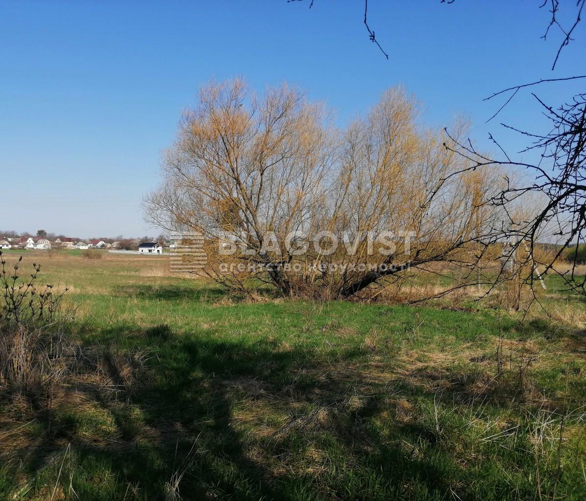 Земельный участок A-112156, Ленина, Бузова - Фото 6