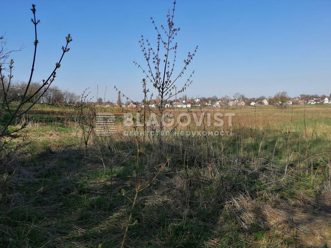 Земельный участок A-112156, Ленина, Бузова - Фото 8