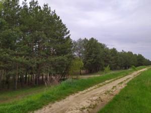 Земельный участок R-35202, Хотяновка - Фото 3