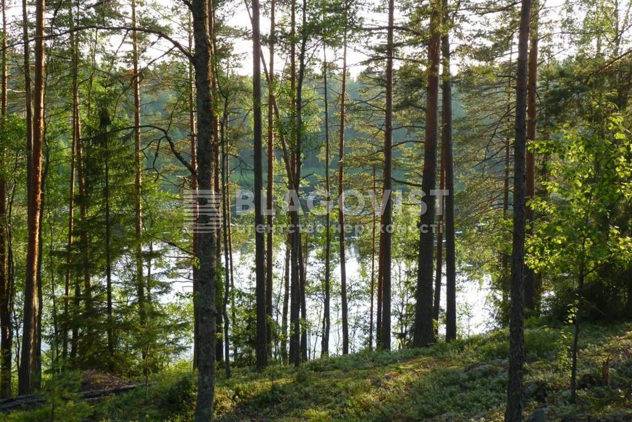 Земельный участок P-29739, Лесная, Таценки - Фото 3