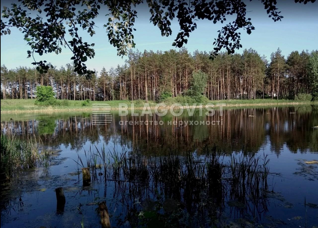 Земельный участок P-29739, Лесная, Таценки - Фото 1